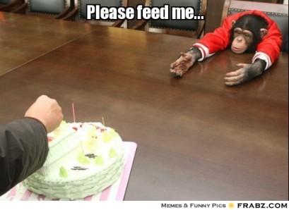monkey feed me